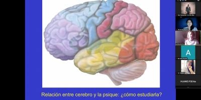 Entering the field of Neuropsychology